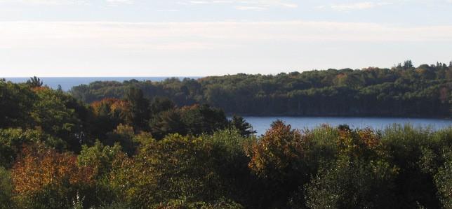 Clam Cove in Glen Cove, Maine