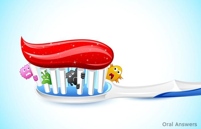 Toothbrush Sanitizers Toothbrush Germs